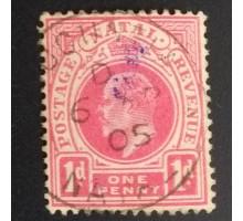 Наталь 1904 (5591)