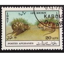 Афганистан 1987. Фауна (6029)