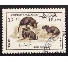 Афганистан 1987. Фауна (6030)