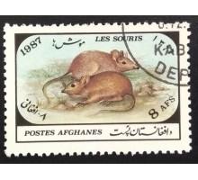 Афганистан 1987. Фауна (6031)