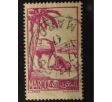Марокко (4703)