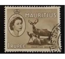 Маврикий (4895)
