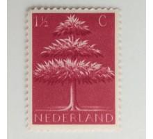 Нидерланды (841)