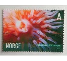 Норвегия (867)