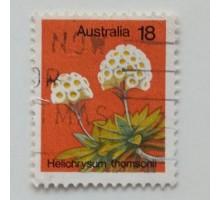 Австралия (746)