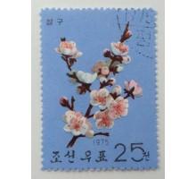 Северная Корея 1964. Цветы (1090)