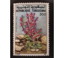 Тунис (1687)