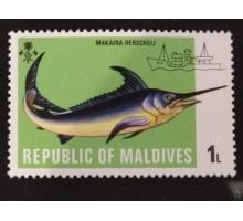 Мальдивы (1704)