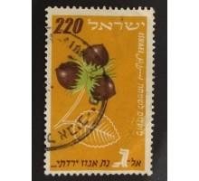 Израиль (1737)