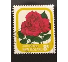 Новая Зеландия (1718)