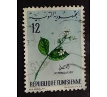 Тунис (1799)