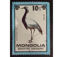 Монголия (1816)