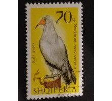 Албания (1861)