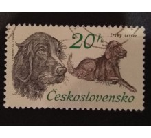 Чехословакия (1956)