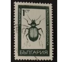 Болгария (2412)