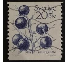 Швеция (2817)