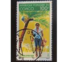 Конго (3339)