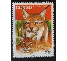 Конго (3352)