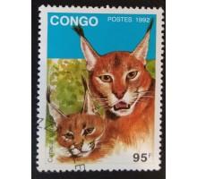 Конго (3354)