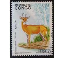 Конго (3356)