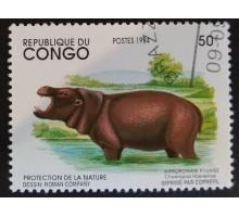 Конго (3357)