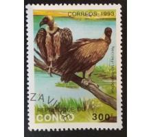 Конго (3363)