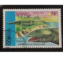Конго (3389)