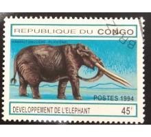 Конго (3391)