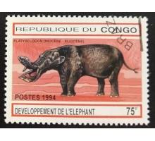 Конго (3393)