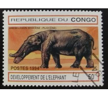 Конго (3395)