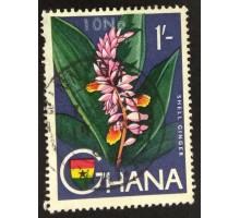 Гана (3514)