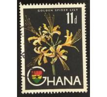 Гана (3517)