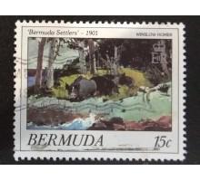 Бермуды (4046)