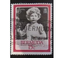 Бермуды (4047)