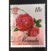 Бермуды (4054)