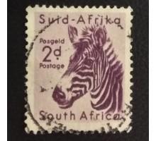 ЮАР (4299)
