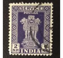 Индия (4353)