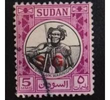 Судан (4737)